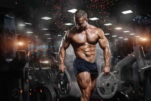 Buscando academia de musculação zona norte?